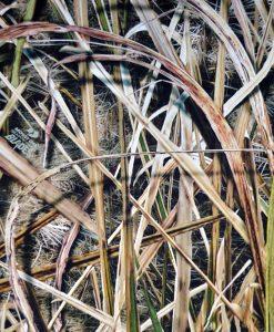 mossy oak shadow grass blades