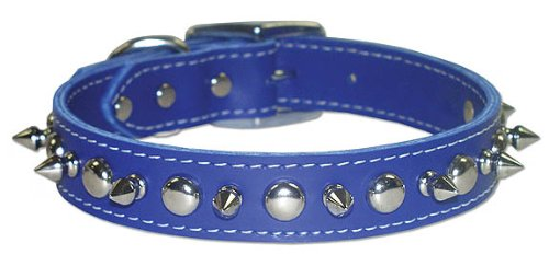 omni pet signature leather pet collar with spike and stud ornaments, blue,