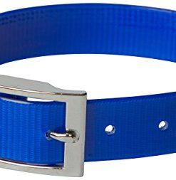 omnipet sunglo regular dog collar, blue