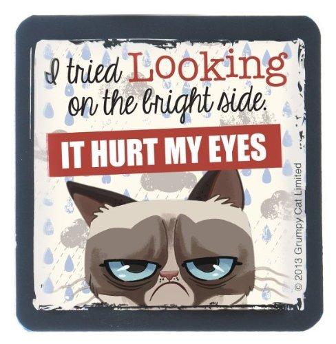 ganz grumpy cat rubber magnet