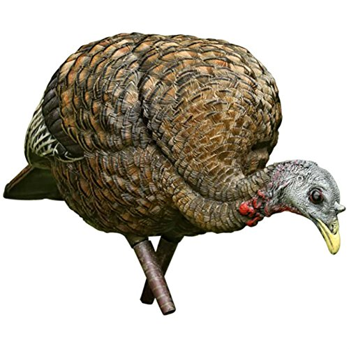 avianx feeder turkey decoy
