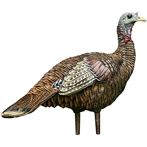 avianx lookout turkey decoy,