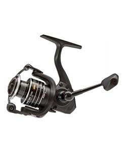 lew's fishing tournament hs speed spin series reel, 8.3 oz.