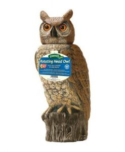 dalen products natural enemy scarecrow rotating-head owl