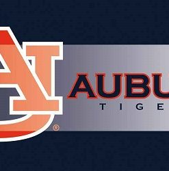 evergreen auburn university sassafras switch mat