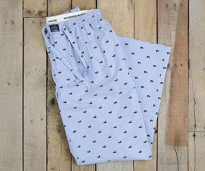 Light Blue with Navy Ducks