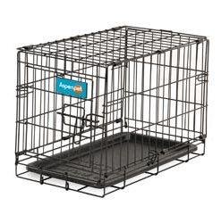 Aspen Pet Home Training Wire Crate 24""