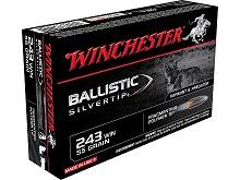 Winchester Ballistic Silvertip 243 Win 55 Gr.