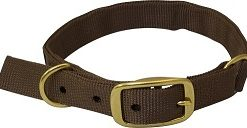 Drake Team Gun Dog Split Ring Collar