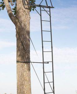 "Big Game ""The Big Buddy"" Ladder"