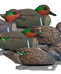 Green-Wing Teal Decoy